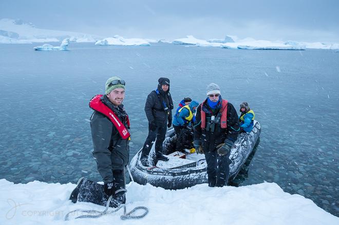 Cuverville Island, Antarctica12013