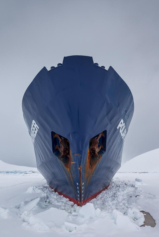 Polar Pioneer