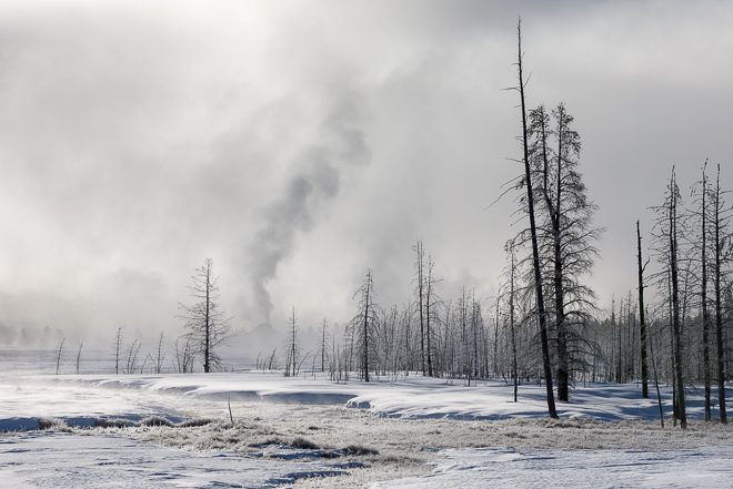 Yellowstone-7096-Edit12015