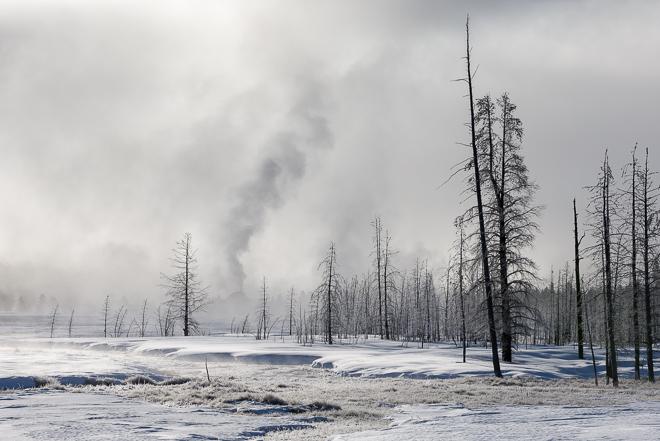 Yellowstone-7096-Edit12015