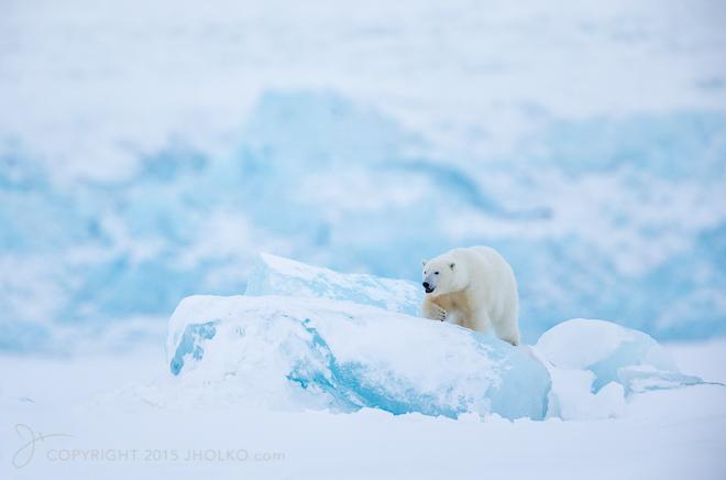 Svalbard-8864-Edit12015