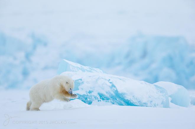 Svalbard-9056-Edit12015