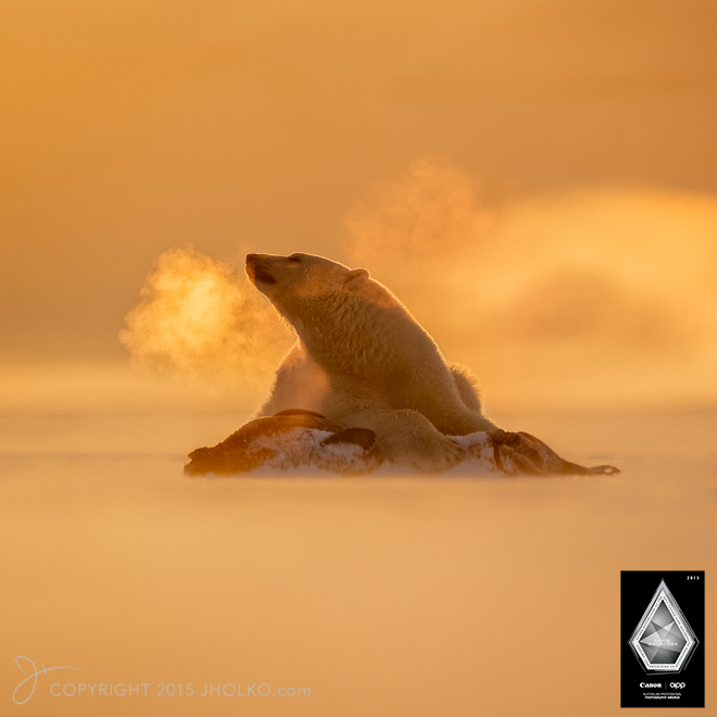 Svalbard-9725-Edit copy