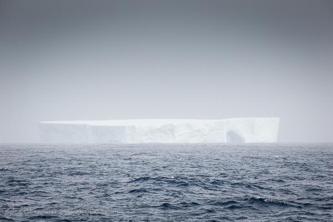 Antarctica-6927